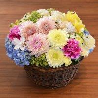 お祝い用 お花のオーダーメイドギフト 27,000円セット (アレンジメント)