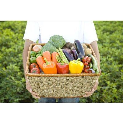 季節の野菜セットA 【有機農産物、農薬化学肥料不使用 (特別栽培農産物)】