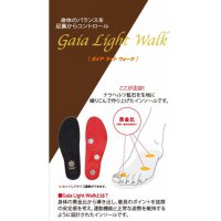 Gaia Light Walk(ガイアライトウォーク)