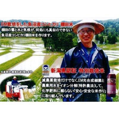 魚沼産コシヒカリ・棚田米 25kg (10k×2個+5k×1個)