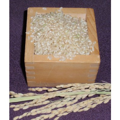 魚沼産コシヒカリ・棚田米(玄米)25キロ