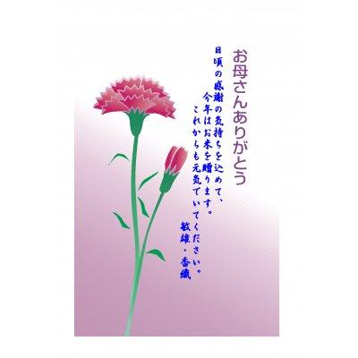 お祝い米(魚沼産コシヒカリ)