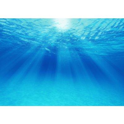 アレルギーを治す超重曹水のお話 11月15日(水)開催 サンプルのお土産付きで