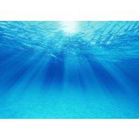 【終了】アレルギーを治す超重曹水のお話 11月15日(水)開催 サンプルのお土産付きで