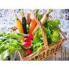 【すぐに始められる酵素ジュース作りセット】毎月違うから楽しみ!季節の野菜果物とミネラル水の詰め合わせ