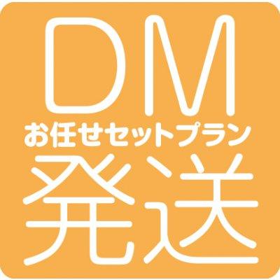 ゆうメール(お任せセットプラン) 【100通分】