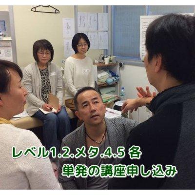 キネシオロジー各一講座2日間【タッチフォーヘルス】TFH