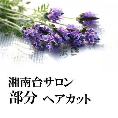 【湘南台Salon&出張】部分ヘアカット(60分)