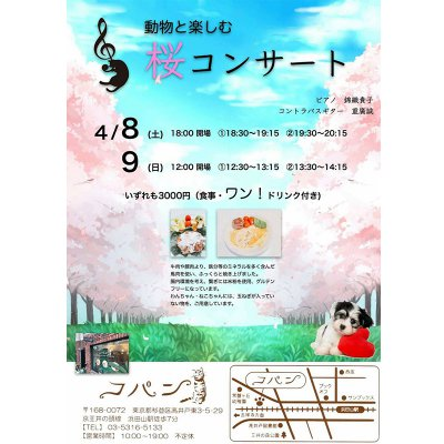 動物と楽しむ 桜コンサート 4月8日(土)の画像1