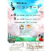 動物と楽しむ 桜コンサート 4月9日(日)