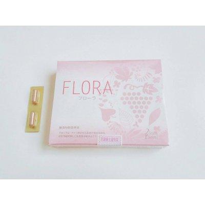 FLOLA フローラ 乳酸菌発酵食品