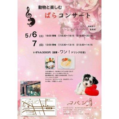 動物と楽しむ ばらコンサート 5月6日(土)