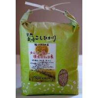 【自然栽培米‼︎】『コシヒカリ』玄米2㎏ 兵庫県産