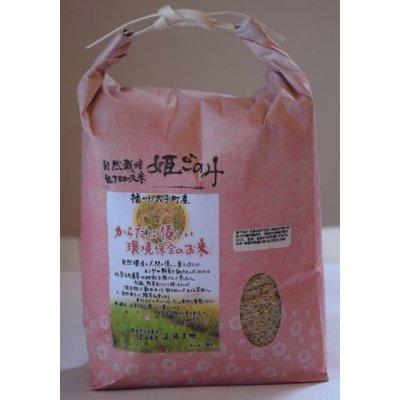 【自然栽培米‼︎】『姫ごのみ』玄米2㎏ 遠藤農園(兵庫県産)