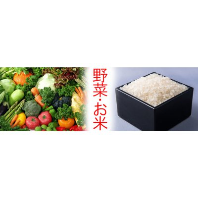[飲食店様用]埼玉県産精米コシヒカリ 100kg+季節の野菜