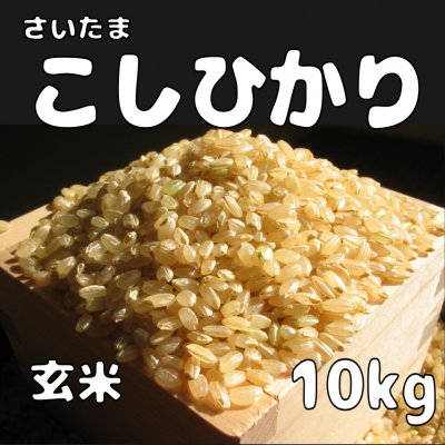 玄米10kg コシヒカリ