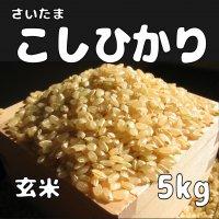 玄米5kg コシヒカリ