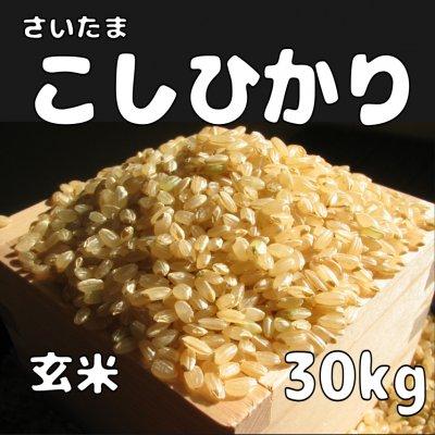 玄米30kg コシヒカリ