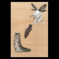 ポストカード【猫蛾の変態】