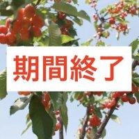 [期間終了]5/27〜6/25までの小野洋蘭果樹園の...