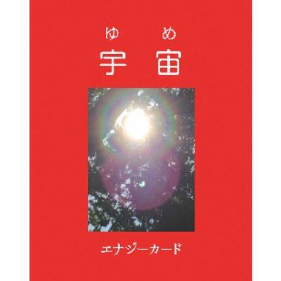 エナジーカード 赤 (プラケース付)