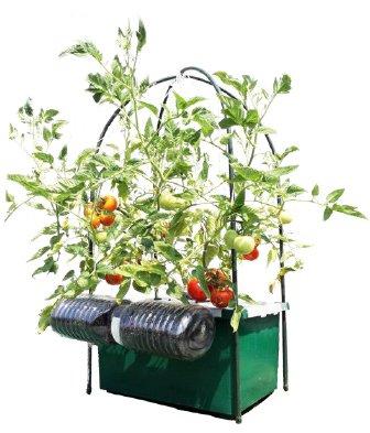 ほったらかしで安全野菜を自分で簡単に作れたら良くないですか、 水やりの心配が無い、手間いらずで出来るオーガニックプランター 水やり心配なし、ほったらかしで安心野菜が どんどん育つ世界初の新技術 電源は不要!自動野菜栽培システム お好きな野菜の種を選んで頂けます。の画像4
