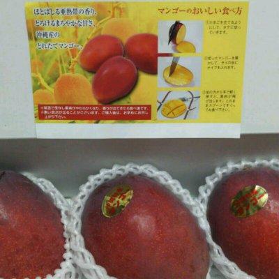 7月収穫、配送開始!沖縄マンゴー1箱3個入り(送料込み)