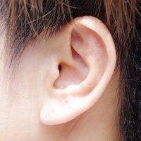貼っているか分からない透明耳つぼシールの追加