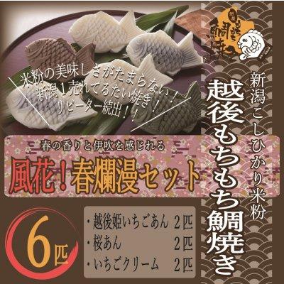 【春限定】越後もちもち鯛焼き(風花!春爛漫セット)米粉の美味しさがたまらない!越後姫のいちごあん、桜あん、苺ミルクの各2個セット!