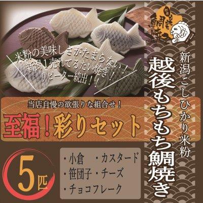 越後もちもち鯛焼き(至福!彩りセット)米粉の美味しさがたまらない!小倉、カスタード、笹団子、チーズ、チョコフレークの5個セット!どれもリピーターが多い最強の組み合わせ!
