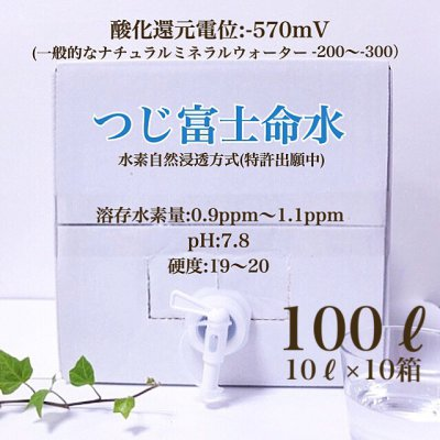 【つじ富士命水】水素水100L(10L×10箱)