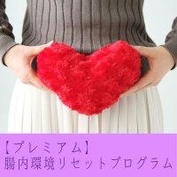 【プレミアム】腸内環境リセットプログラム
