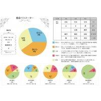 【WEB限定】四柱推命パラメーター(有名人サンプル画像あり)
