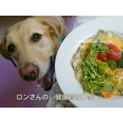 10月20日(金)19:00~21:00 【わんにゃんごはん料理講座】