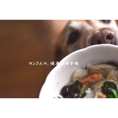 3月3日(土)13:00~15:30【ペット食育(R)入門講座】