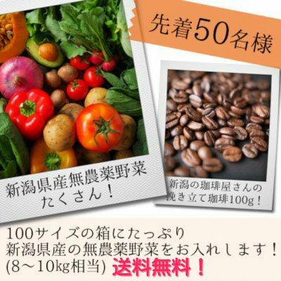 2019年春発送予定!送料無料!新潟県減農薬野菜&挽きたて珈琲詰め合わせ!