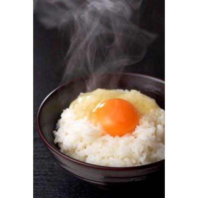 ≪スーパーエッグE≫ビタミンEが一般卵の10倍以上 『丹波地玉せせらぎ』30個