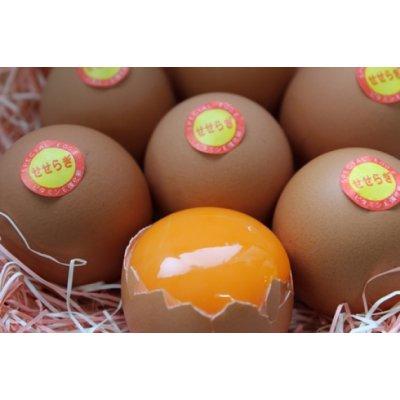 ≪スーパーエッグE≫ビタミンEが一般卵の10倍以上 『丹波地玉せせらぎ』50個