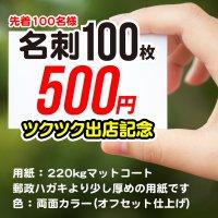 名刺印刷100枚:ワンコイン500円 先着100様