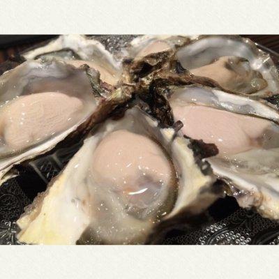 【1月末まで早割】2/13(火)牡蠣&ワインパーティチケット