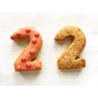 【グルテンフリー・卵不使用】アイシングクッキー ナンバー2(1枚入り)
