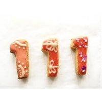 【グルテンフリー・卵不使用】アイシングクッキー ナンバー1(2枚入り)