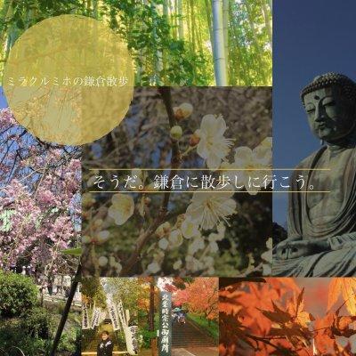 ミラクル  ミホの鎌倉散歩開運座禅体験ツアーの画像1