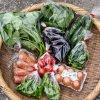 大分県 まるか三代目 季節の野菜セット S 無肥料・無農薬