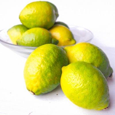 農薬不使用レモン 約200g