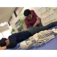 肩こり・腰痛が臨床試験で93%の効果の出た整体 体験会チケット