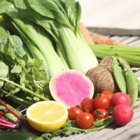月1回定期便 お野菜セット(無農薬、減農薬セット)