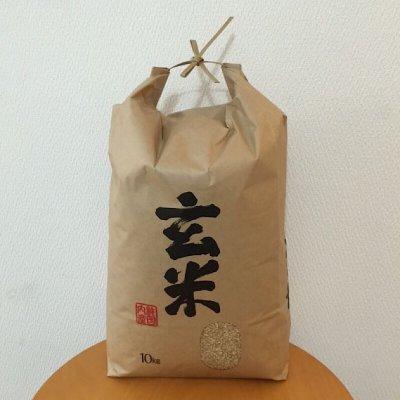 無農薬玄米【10㎏】