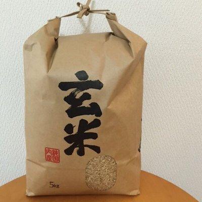 無農薬玄米【5㎏】