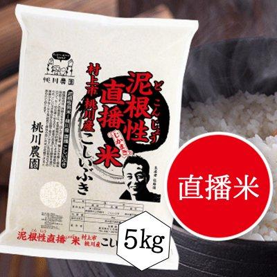【桃川農園】泥根性!直播米桃川産こしいぶき精米【5キロ】